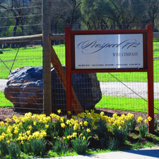 Prospect 772 Wines ~ A superb group of wines from Calaveras County